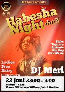 Habesha Party